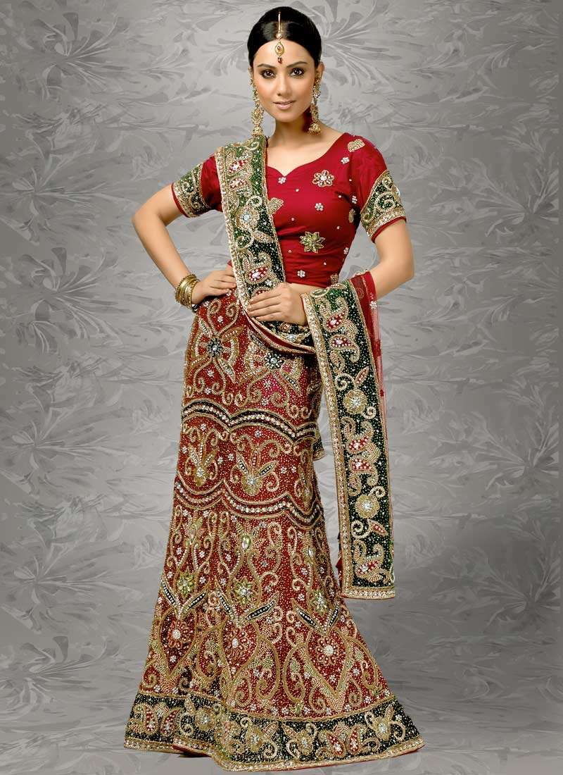 sarees-indian-saree-saree-design-2012-10