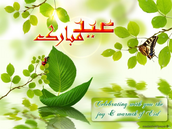 eid-greeting-cards-2012-images-photos-love-flower-eid-5
