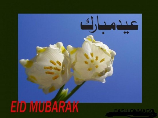 eid-mubarak-greeting-cards-2012-pictures-photos-2