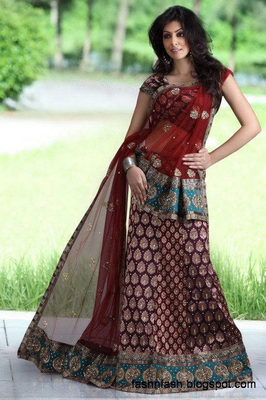 Indian-Pakistani-Beautiful-Bridal-wedding-Dress-Collection-2012-2013-Bridal-Saree-Lehanga-8
