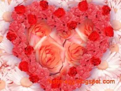 Valentines-Day-Cards-Pictures-Valentine-Special-Gifts-Valentines-Ideas-Love-Cards-Valentines-Photos-8