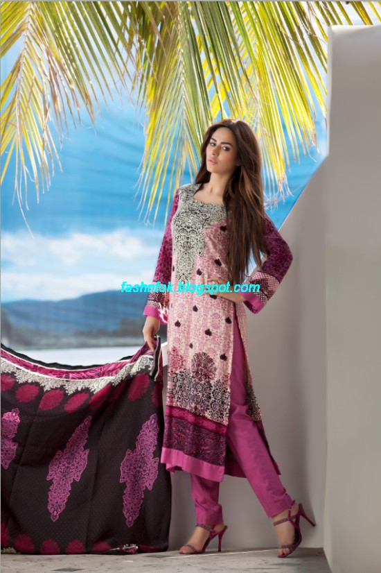 Firdous-Spring-Summer-Lawn-Collection-2013-Firdous-ZTM-Chilman-Regular-Fashionable-Lawn-Prints-4