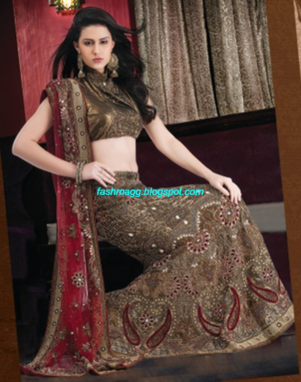 Indian-Beautiful-Bridal-Lehenga-Choli-Dress-for-Brides-Wear-New-Fashionable-Dress-Design-2013-1