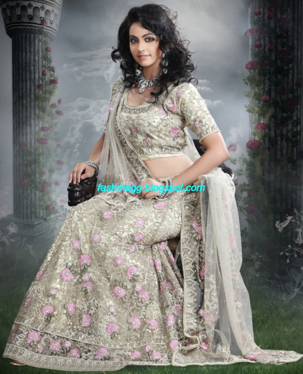 Indian-Beautiful-Bridal-Lehenga-Choli-Dress-for-Brides-Wear-New-Fashionable-Dress-Design-2013-2