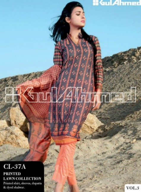 Gul-Ahmed-Lawn-New-Springs-Summer-Collection-2013-Vol-3-3