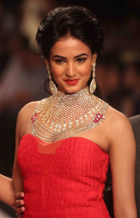 kashi Jewels Show at IIJW 2013 Day 4 Pictures 1