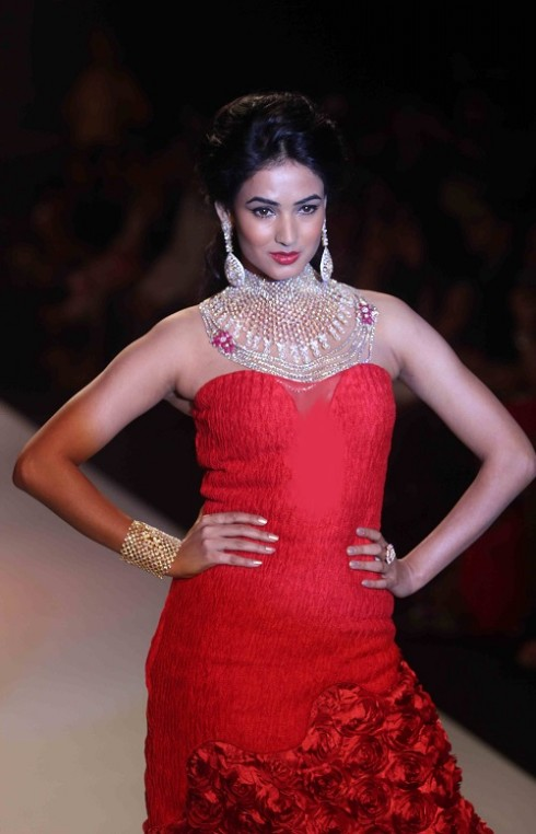 kashi Jewels Show at IIJW 2013 Day 4 Pictures