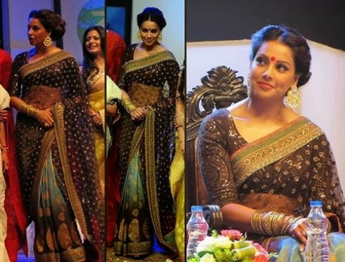 Bollywood-Indian Movies Actresses Celebrities Stars Wear Beautiful Designers Saree-Sari-5