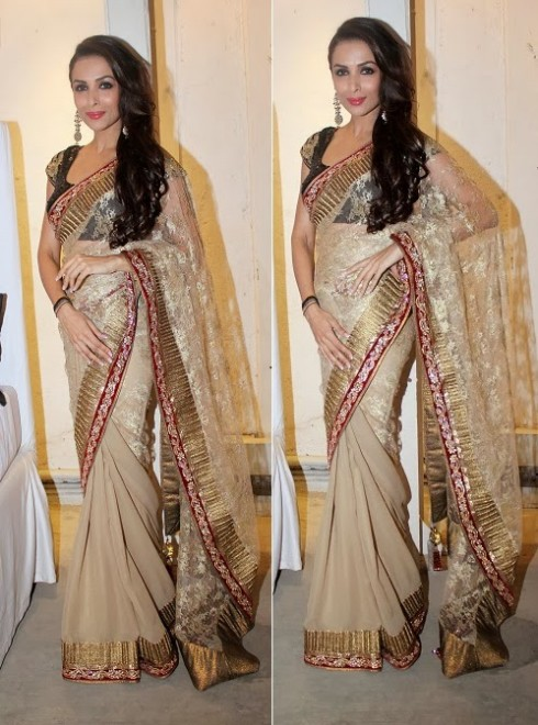 Bollywood-Indian Movies Actresses Celebrities Stars Wear Beautiful Designers Saree-Sari-9
