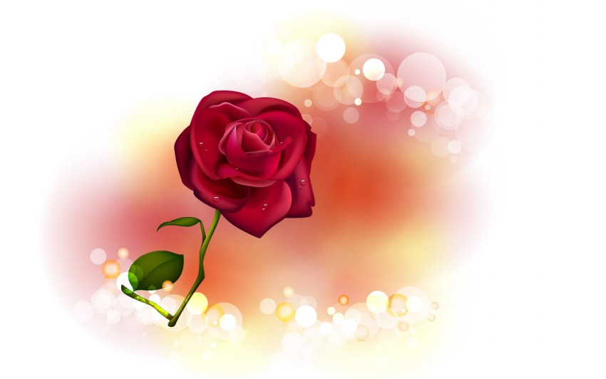 Valentine,s-Day-Red-Rose-Flower-Greeting-Cards-Pictures-Valentine-Gifts-Valentines-Love-Heart-Card-Image-2