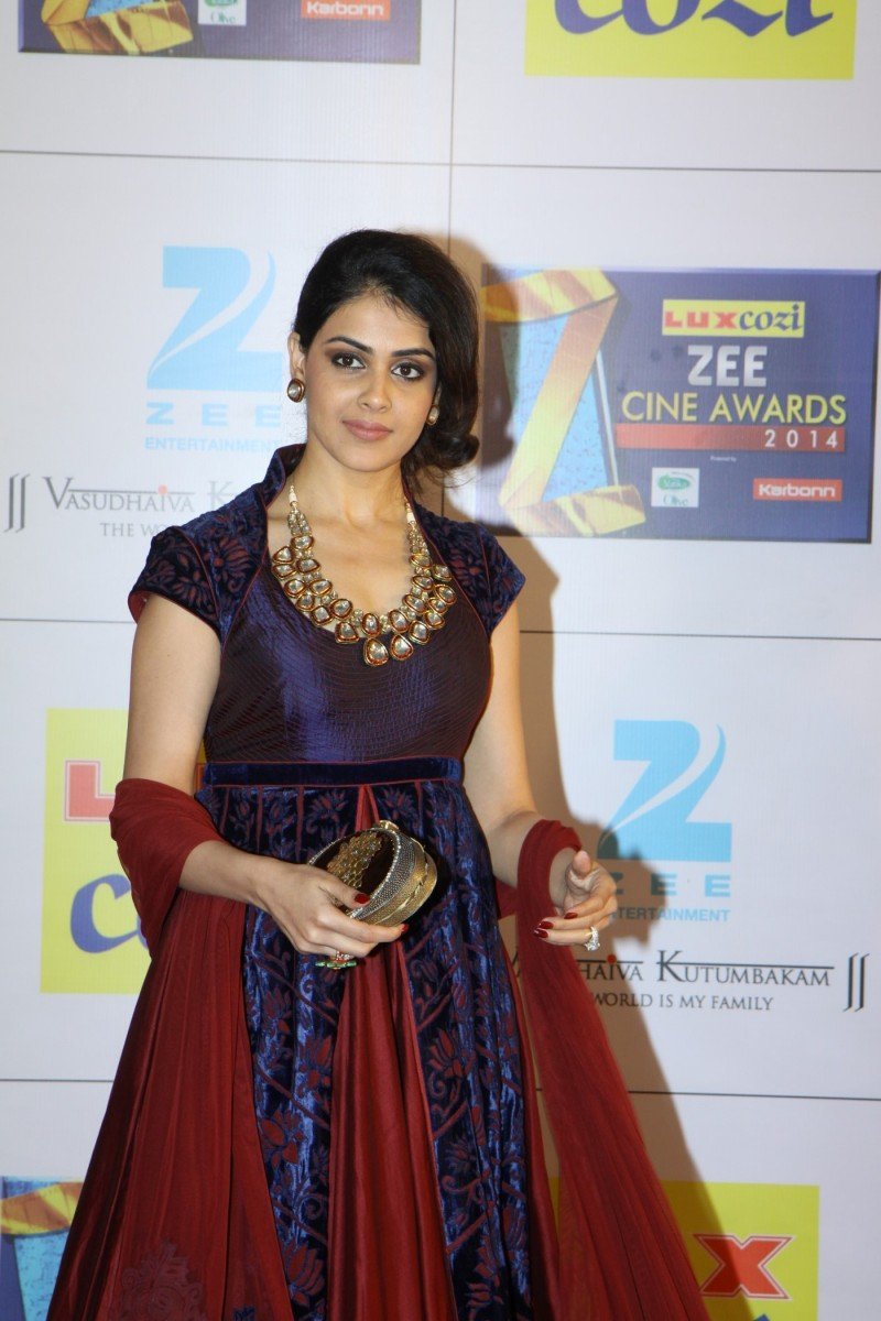 Bollywood-Indian-Movies-Celebs-At-The-Zee-Cine-Awards-Photos-Pictures-8