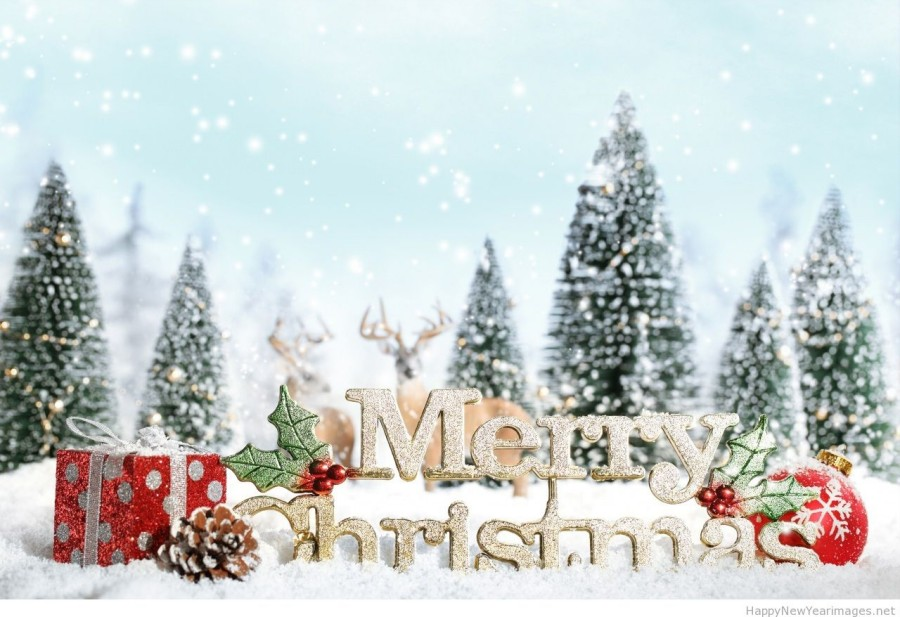 Christmas-and-New-Year-3D-Animated-Greeting-Cards-Designs-9