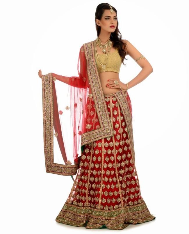 Indian Designer Wedding-Bridal Wear Brides Beautiful New Fashion Lehangas-Choli Dress-5