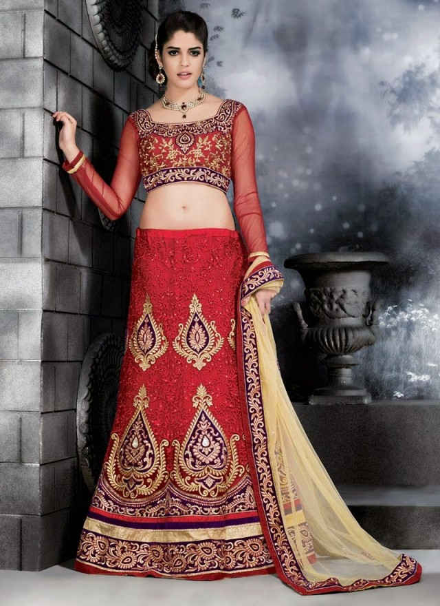 Embroidered Engagement-Wedding-Bridal-A Line Fancy Lehenga-Choli Dress for Brides-Dulhan-9