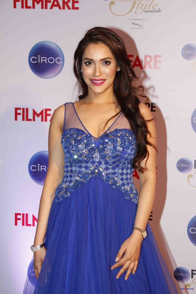 Bollywood-Indian-Movies-Celebrities-Actresses-Models-at-Ciroc-Filmfare-Glamour-Style-Awards-12