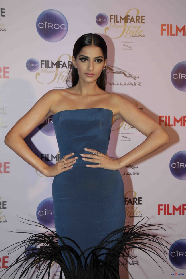 Bollywood-Indian-Movies-Celebrities-Actresses-Models-at-Ciroc-Filmfare-Glamour-Style-Awards-3